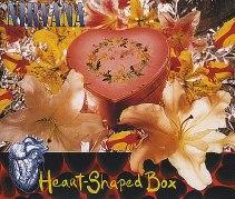 """""""HEART SHAPED BOX"""" Nirvana"""